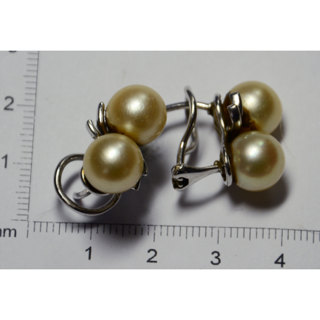 Earrings in white gold of law