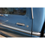Ford F100 Lungo