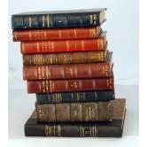 Lote de varios Libros