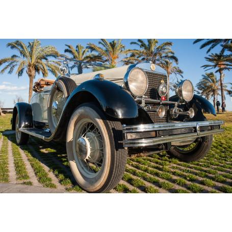 Gardner. 8-75. 1929. 4021cc. Cabrio. Coupé.