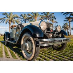 Gardner. 8-75. 1929. 4021cc. Cabrio. Un coupé.