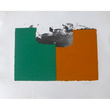 Alfons BORRELL PALAZON - Rexistros da paisaxe 2