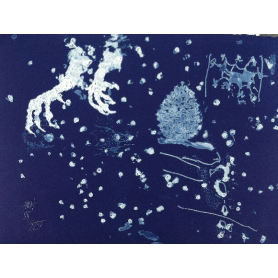 Frederic AMAT - blue Star.