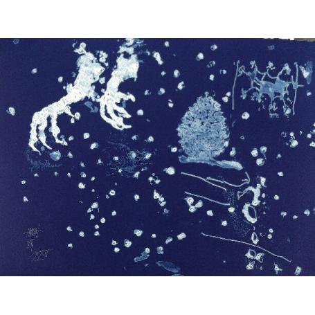 Frederic AMAT -- Bleu étoilé