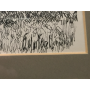 Signed: Martorell. Drawing nib.